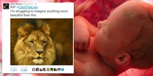 Liberals Vent Outrage At Killing Of Cecil The Lion But Silent On Abortion Deaths Of Little Babies