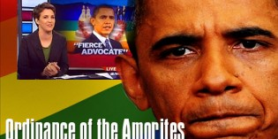 Obama to Use Foreign Aid to Force Gay Rights Overseas as Official US Policy