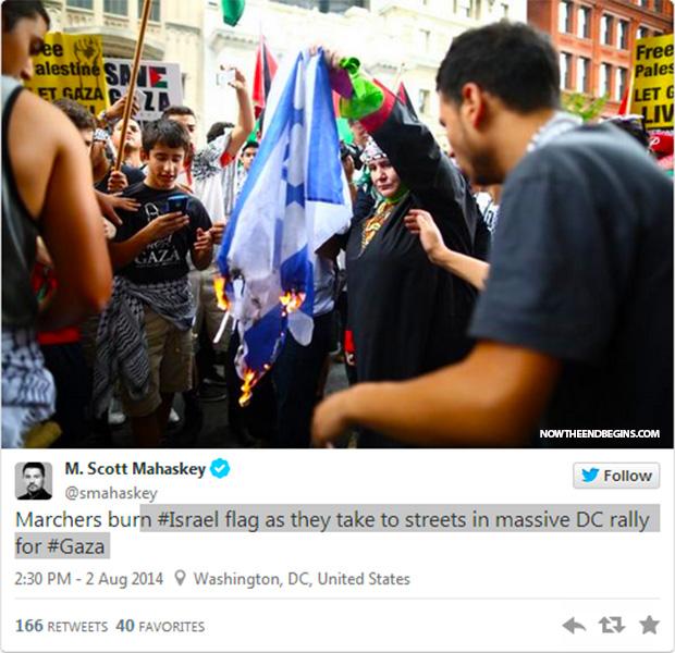 anti-israel-protests-burning-flag-washington-dc-august-2-2014-04