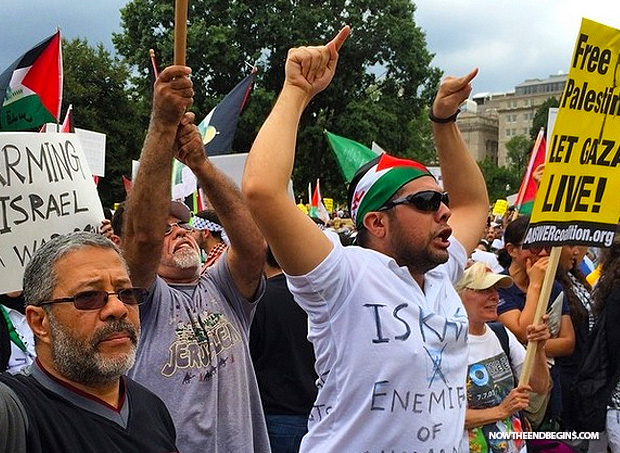anti-israel-protests-washington-dc-august-2-2014-02
