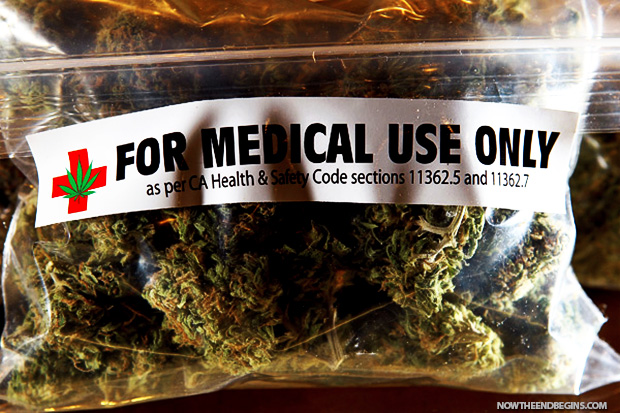 terrible-truth-about-legal-pot-cannabis-420-medical-marijuana