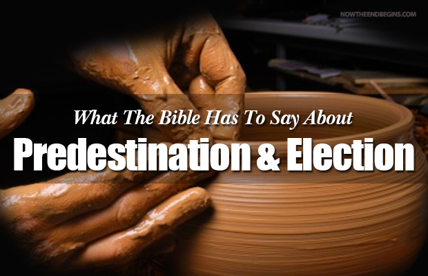 predestination-election-reformed-theology-calvinism-rightly-dividing-bible-study-nteb
