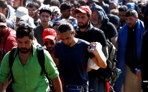 german-minister-warns-10-million-more-muslim-migrants-headed-to-europe