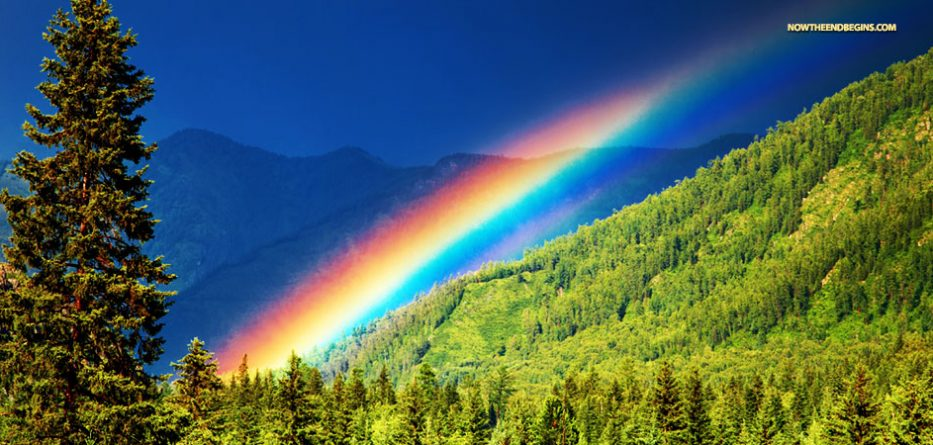 Gods Rainbow Has 7 Colors Lgbt Pride Symbol
