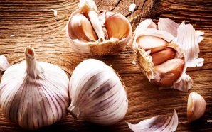 garlic-will-prevent-mosquito-bites-zika-virus-health-benefits