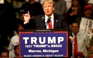 michigan-certifies-donald-trump-as-winner-306-electoral-votes