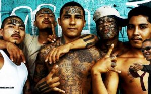 obama-knowingly-allowed-ms-13-gang-members-into-united-states-illegal-immigrants
