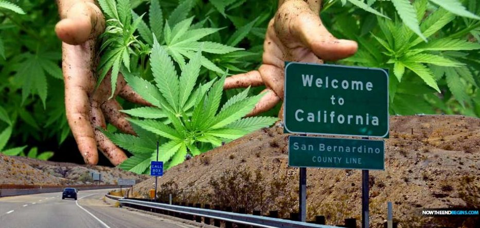 california-legal-recreational-marijuana-sales-proposition-64-pot-sales-cbd-high