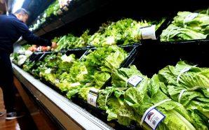 fda-warns-against-eat-romaine-lettuce-after-e-coli-outbreak-sickens-32-people-11-states