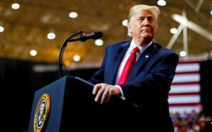victory-donald-trump-republicans-take-senate-ted-cruz-ron-desantis-winning-democrats-heartbroken