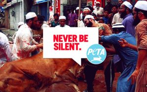 PETA silent as Goats, sheep and cows are slaughtered as Muslims mark festival of Eid around the world
