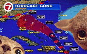 Tropical Storm Dorian could reach Florida as a Cat 3 hurricane this weekend