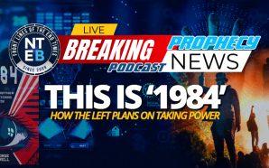 democrats-plan-seize-power-george-orwell-1984-black-lives-matter-antifa-blm-terrorists-end-times-nteb