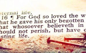 john-316-only-begotten-son-jesus-christ-lord-saviour-king-james-bible