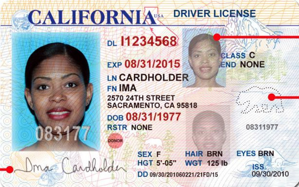 california-votes-to-give-drivers-licenses-to-illegal-alien-immigrants-cloward-piven-obama