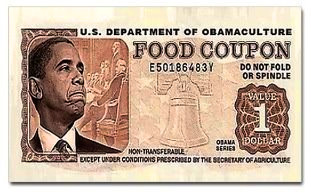 Image result for images of food stamps