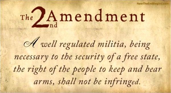 second-amendment-gun-control-obama-new-world-order-ban